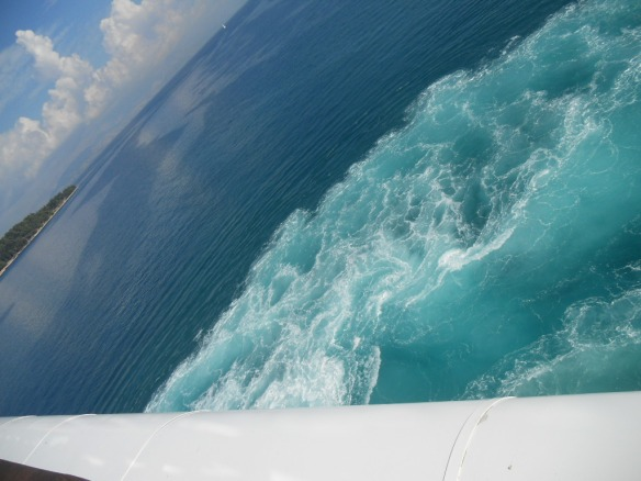 The light blue waves are the water stirred up from the ship turnig 180 degrees before leaving port